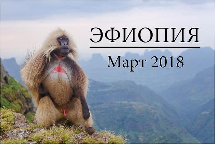 Фототур в Эфиопию