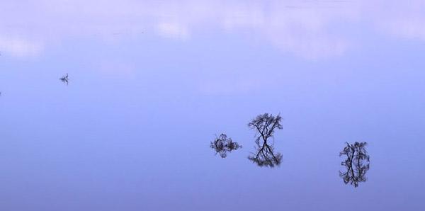 «Невероятная Африка» / фотовыставка Сергея Милюхина